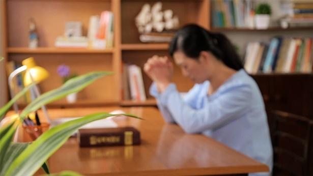 顺服神的收获(有声读物)